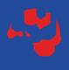 Handbalvereniging DSS Logo